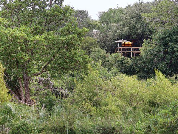 Londolozi Tree Camp Overview