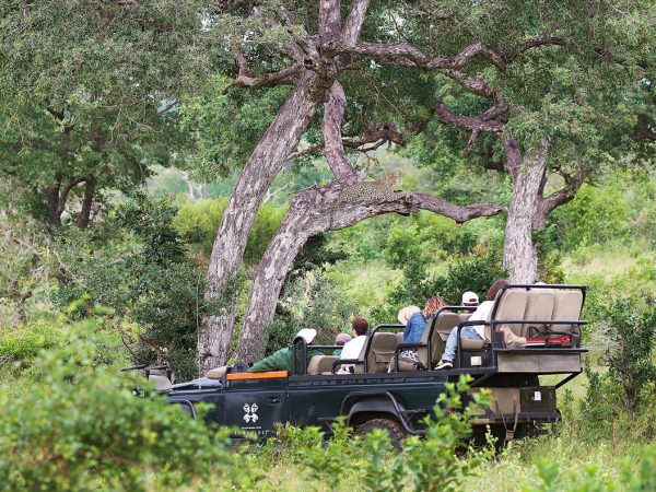 Londolozi Tree Camp Private Vehicle Available