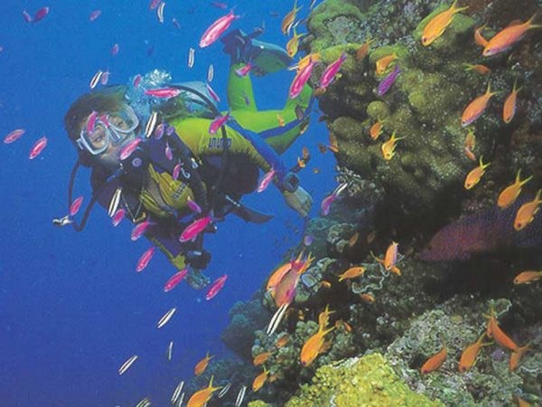 One and Only Le Saint G?ran Mauritius Scuba Diver Courses