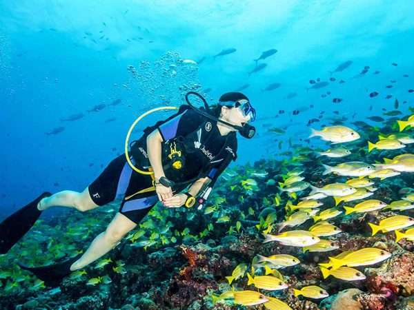 One and Only Reethi Rah Maldives Diving & Snorkelling