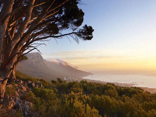 Belmond Mount Nelson Hotel Fynbos Sunset Walks on Table Mountain