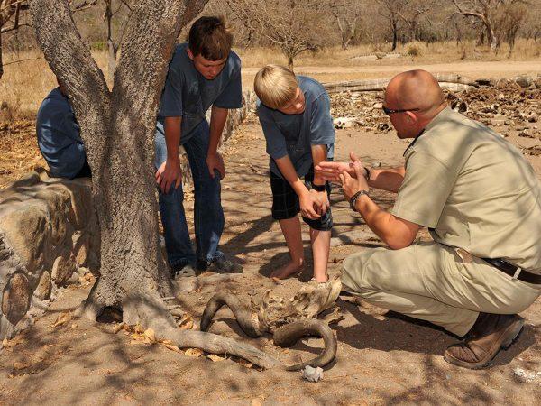 Camp Jabulani Guided walking safaris