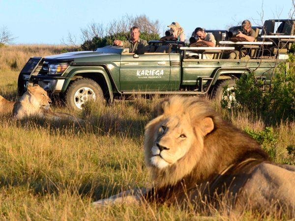 Kariega Game Reserve Photographic Safaris