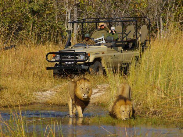 Ker and Downey Botswana Okuti Game Drives