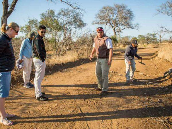 Makanyi Private Game Lodge Bush Walks