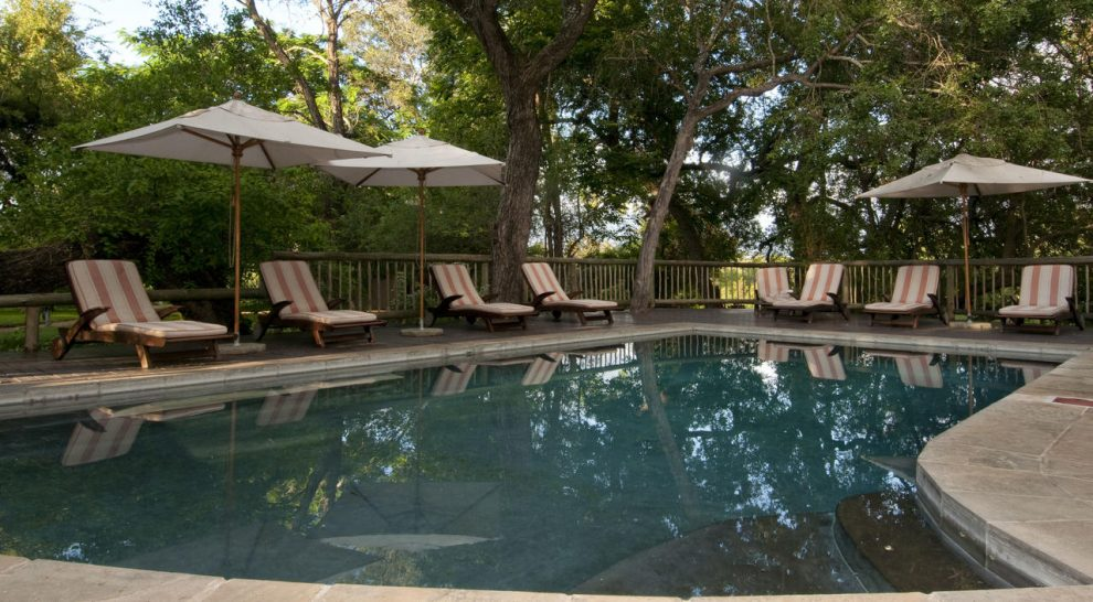 Sabi Sabi Selati Camp Swimming pool