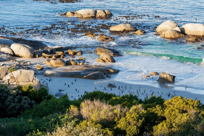 Tintswalo at Boulders Beach