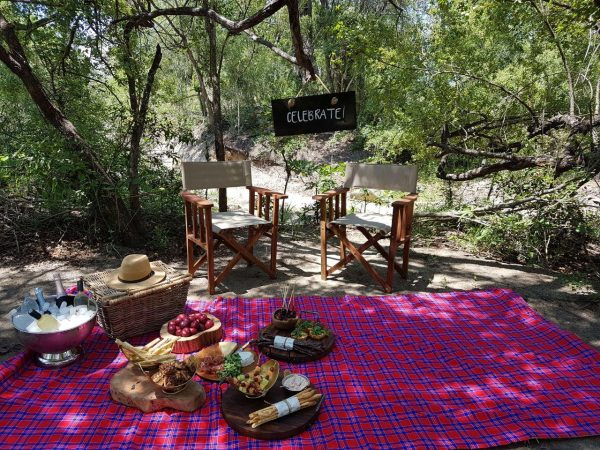 Chitwa Chitwa Game Lodge Bush Picnic