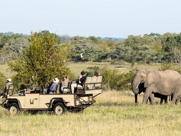 Chitwa Chitwa Game Lodge Elephant Introduction