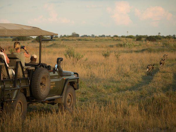 Duba Plains Camp Guided Walks