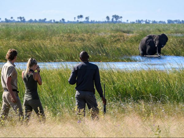 Duma Tau Nature Walks