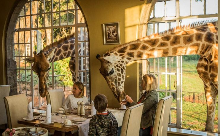 Giraffe Manor Nairobi Breakfast Dining