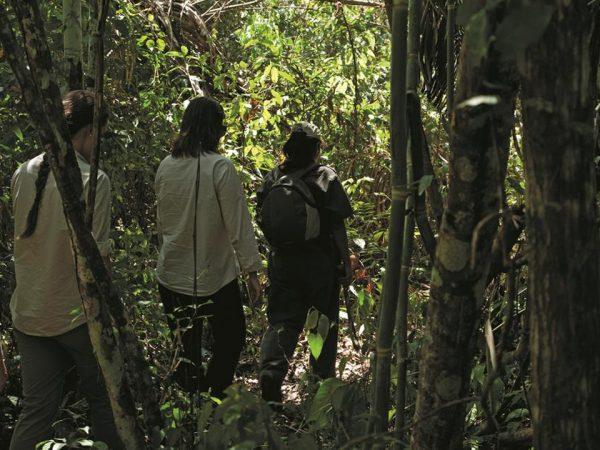 Inkaterra Hacienda Concepcion Excursions