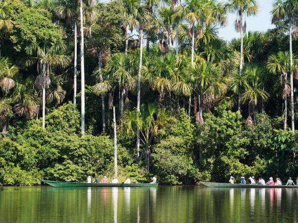 Inkaterra Hacienda Concepcion Guide to Tambopata