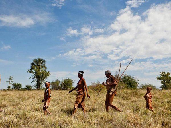 Jack's Camp Bushman Walk
