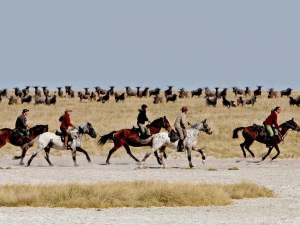 Jack's Camp Horse Safari