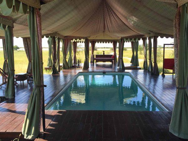 Jack's Camp Inside Pool