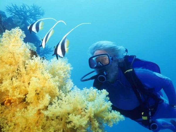 Jean Michel Cousteau Resort Fiji Diving FAQ