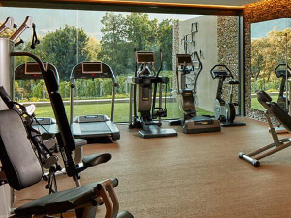 Leeu House Gym