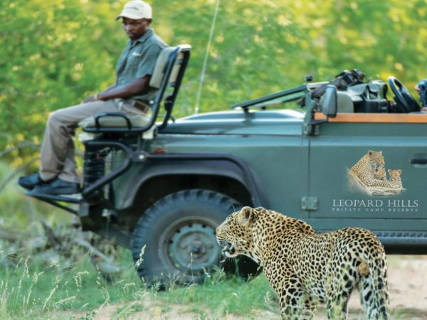Leopard Hills Game Drives