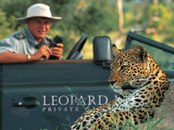 Leopard Hills Wildlife Photography