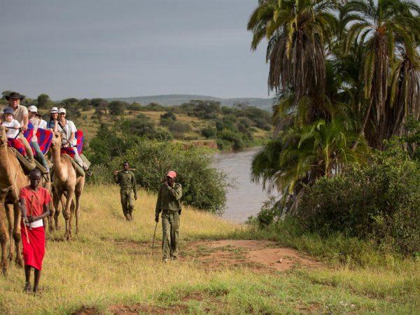 Loisaba Star Beds Camel Trekking
