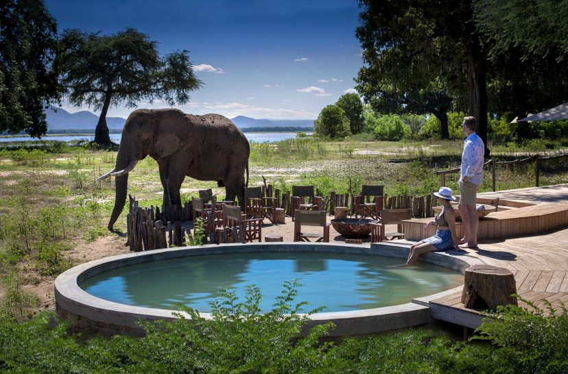 Nyamatusi Camp & Mahogany, Mana Pools