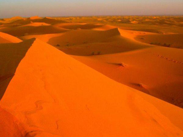 Palais Namaskar The Desert