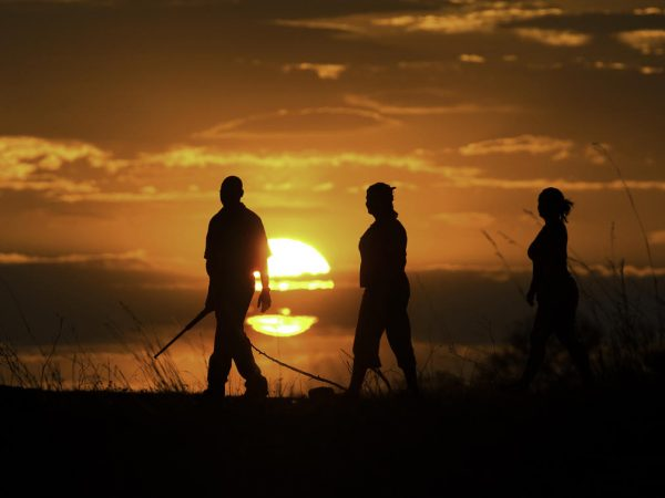 Selinda Camp Guided Walks