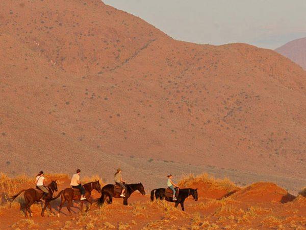 Wolwedans Dunes Lodge Horseriding