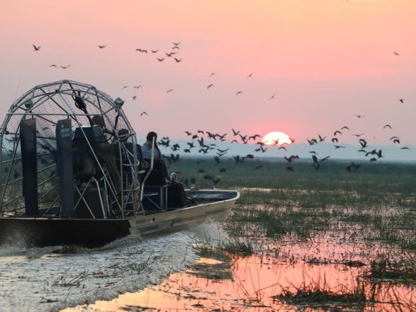 Bamurru Plains Airboat Safari