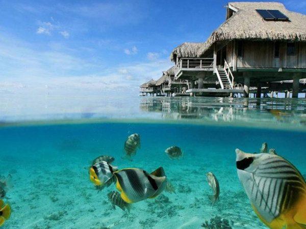 Conrad Bora Bora Nui Under Over Villa