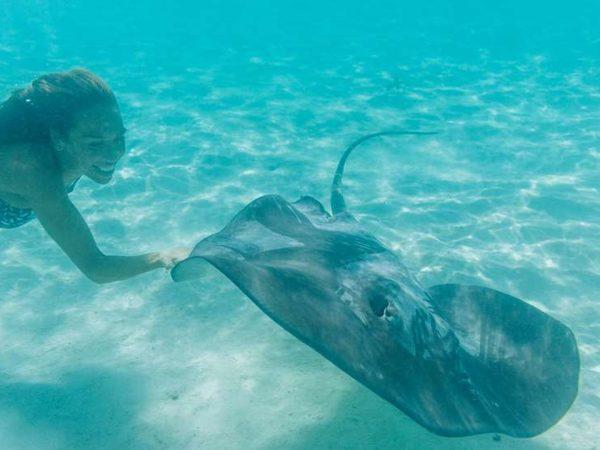 Hilton Moorea Lagoon Resort and Spa Underwater