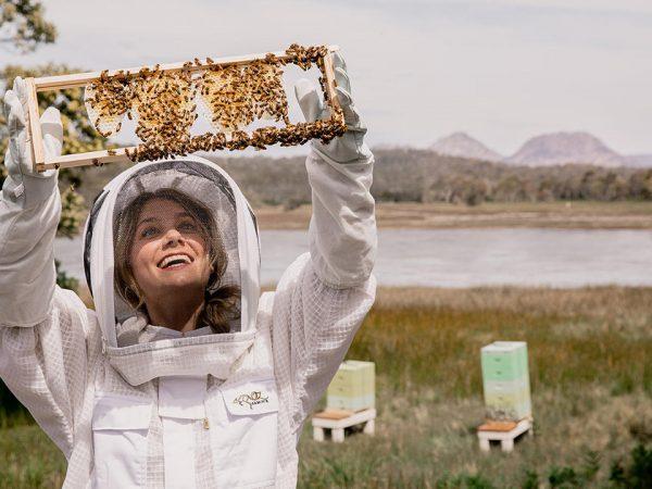 Saffire Freycinet Beekeeping Experience