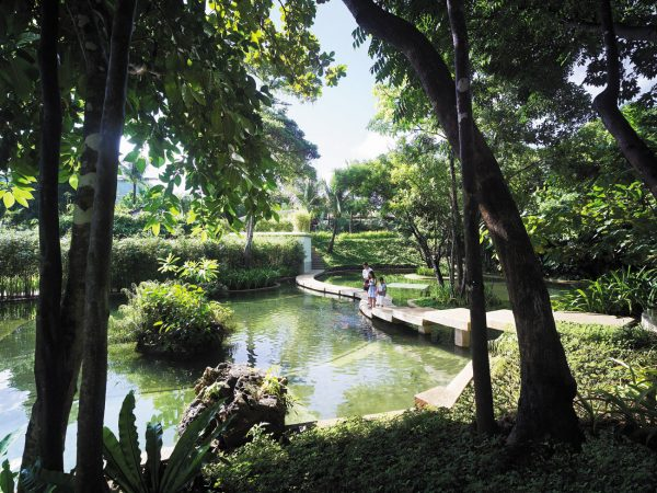 Shangri La's Boracay Resort And Spa Fish Feeding