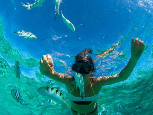 Thanda Island Snorkelling