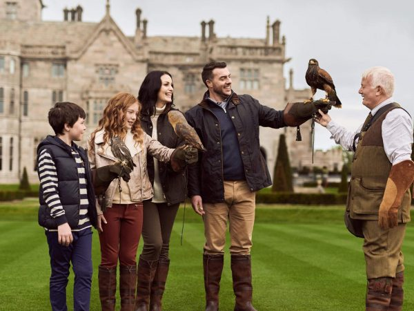 Adare Manor Falconry