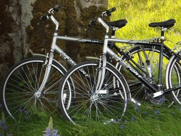 Ballyfin Demesne 5 Star Hotel Cycle