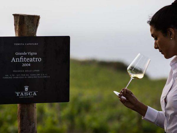 Capofaro Locanda and Malvasia Wine Ecosystem