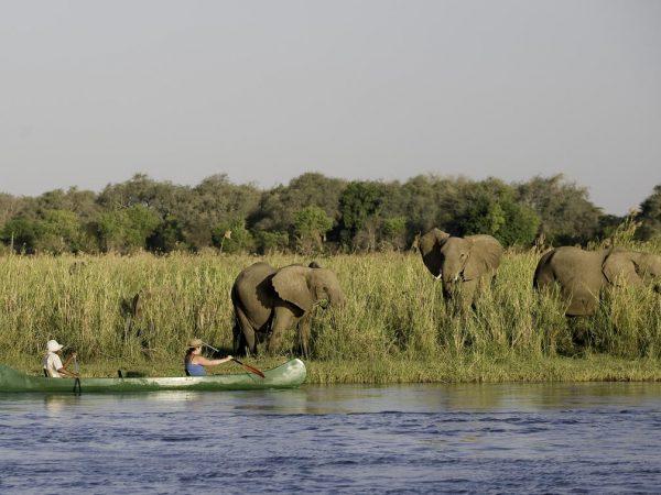 Chikwenya Camp Canoeing