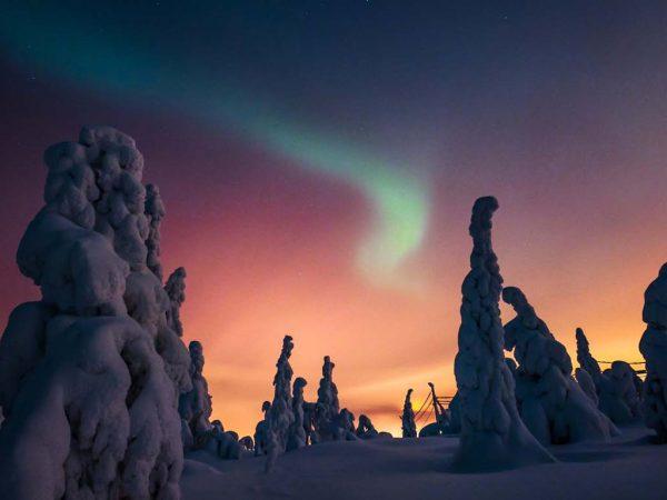 Kakslauttanen Arctic Resort Aurora Hunting