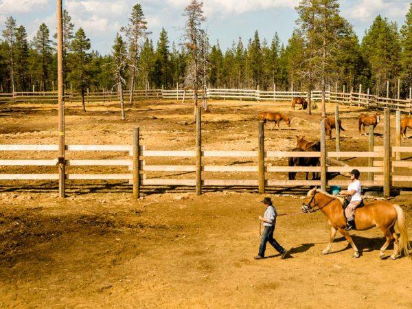 Kakslauttanen Arctic Resort Horse Safaris