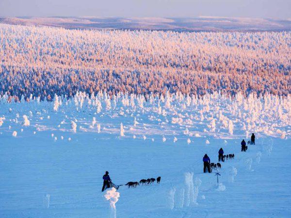 Kakslauttanen Arctic Resort Husky Safaris