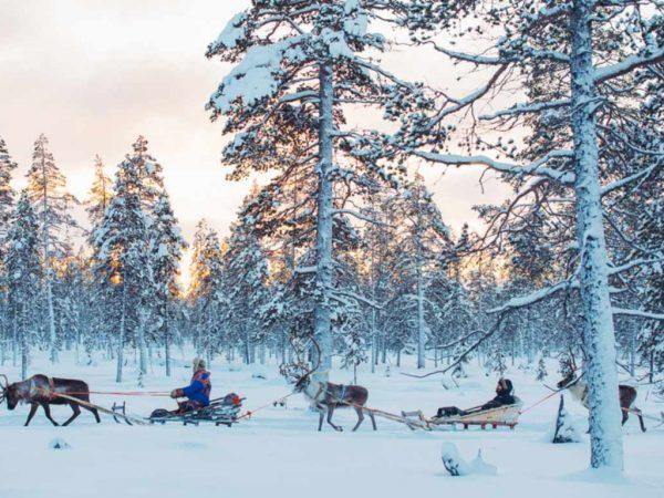 Kakslauttanen Arctic Resort Reindeer Safaris