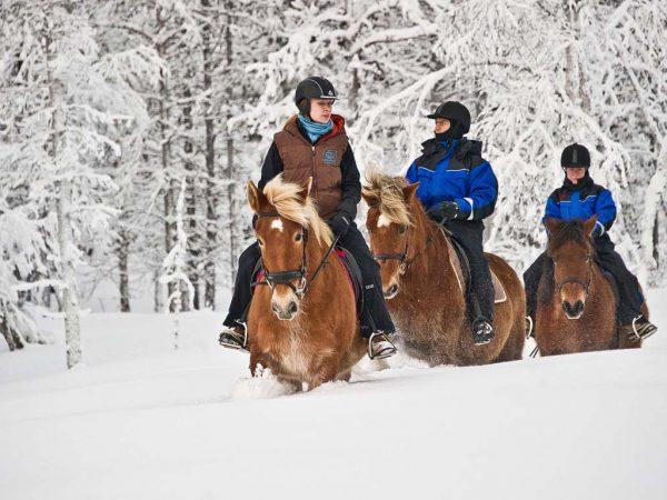 Kakslauttanen Arctic Resort Riding Safaris