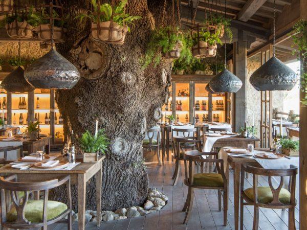 Relais Borgo Santo Pietro Trattoria Sullalbero Restaurant