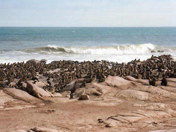 Shipwreck Lodge Beach View