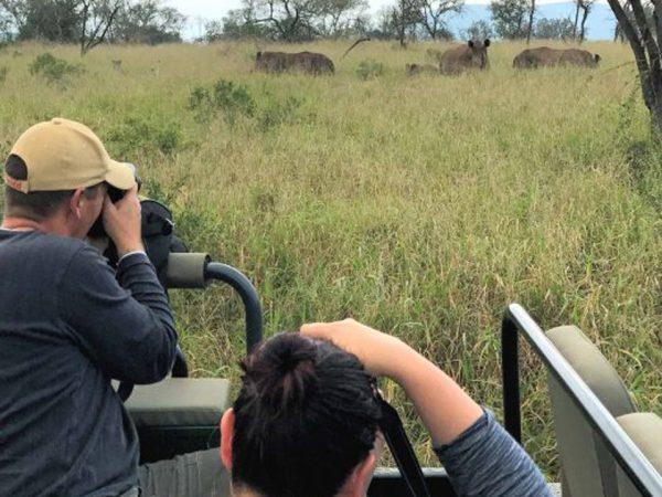 Thanda Safari Photography