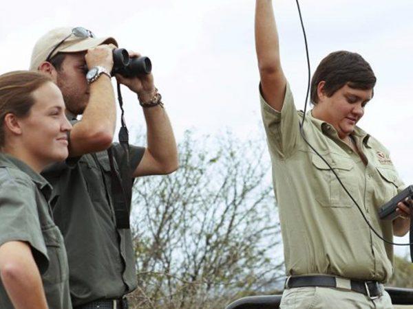 Thanda Safari Rhino Tracking