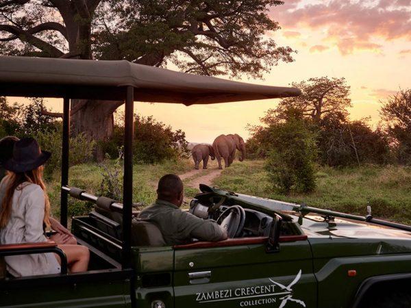 Victoria Falls River Lodge Victoria Falls Safari